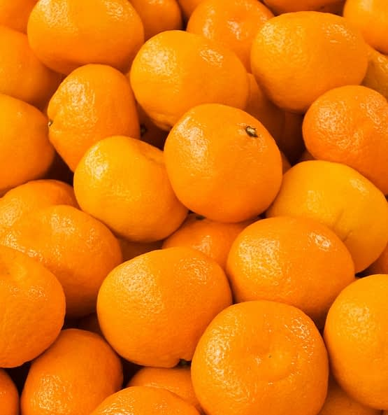 yodeyma cheante tangerine